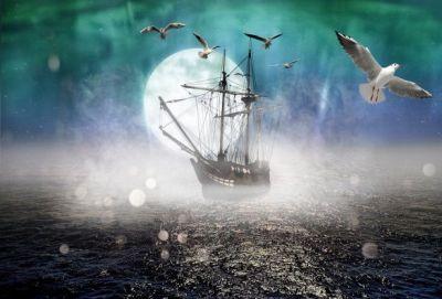 Меня опять потянуло к морским берегам. Мне стали сниться мачты, волны, паруса, чайки, неизвестные страны, огни маяков.