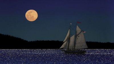 Но ветер стих, волнение улеглось, и мне стало гораздо легче. Понемногу я начал привыкать к морю. Правда, я ещё не совсем отделался от морской болезни, но к концу дня погода прояснилась, ветер совсем утих, наступил восхитительный вечер.