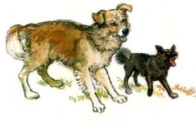Когда я шел по своец слободе, собаки меня не обижали. Но рядом с чужими дворами Жучка и Волчок залаяли. Я так испугался!!!!! Бросился бежать во весь дух!