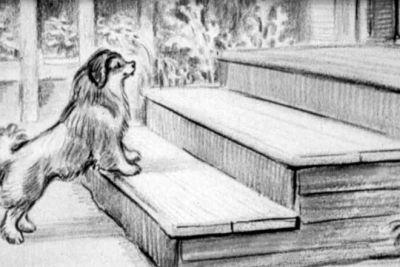 Все люди в доме полюбили меня и тоже кликали Мумуней. Я оказалась чрезвычайно умна, ко всем ласкалась, но любила одного Герасима. Герасим сам  любил меня без памяти... и ему было неприятно, когда другие меня гладили... Вот это любовь!